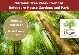 National Tree Event at Belvedere - Guided Woodland Walk
